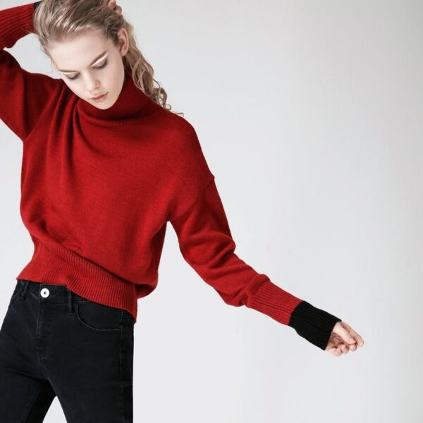 Women-Red Turtleneck - High Neck Simple Turtleneck - Sweaters-And-Pullovers-Autumn-Turtleneck-Long-Sleeve-Pull-Femme-Black-Red-Color-Women-Casual-1