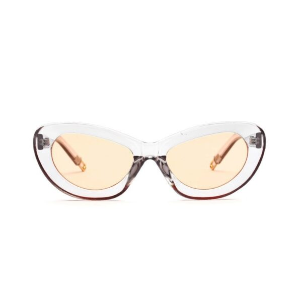 transparent-silver-bold-frames-vintage-sunglasses-for-women