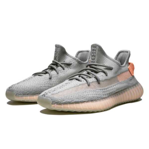yeezy boost 350 true form shoes